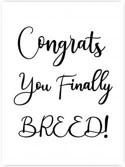 congrats you finally breed